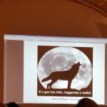 3-presentazione-lupo